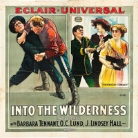 Into the Wilderness movie poster