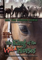 The King of the Wild Horses movie poster