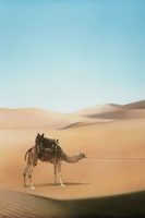 Ishtar movie poster