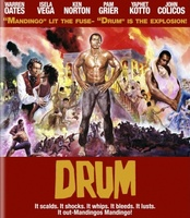 Drum movie poster