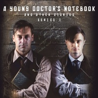 A Young Doctor's Notebook movie poster