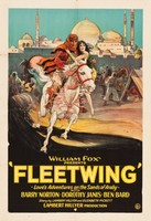 Fleetwing movie poster