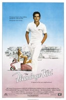 The Flamingo Kid movie poster