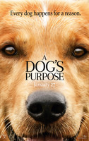 A Dogs Purpose (2017) movie poster #1376865
