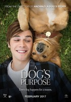 A Dogs Purpose (2017) movie poster #1467350