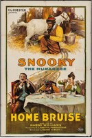 Snookys Home Run movie poster
