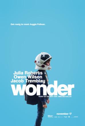 Wonder poster #1510536