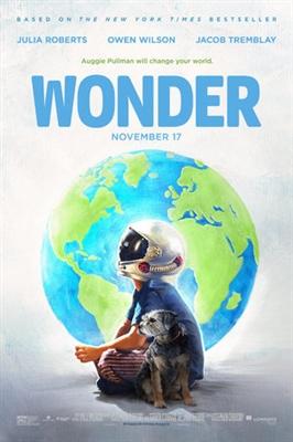 Wonder poster #1510814