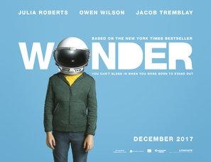 Wonder poster #1514501