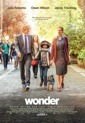 Wonder poster #1518974