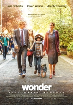 Wonder poster #1523000