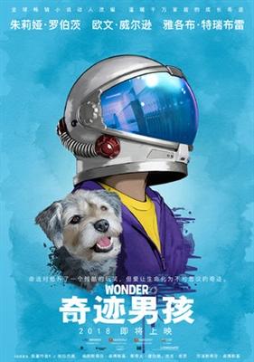 Wonder poster #1529656