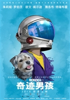 Wonder #1529656 movie poster