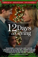 12 Days of Giving movie poster