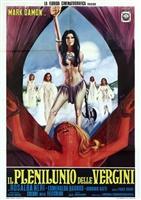 Il plenilunio delle vergini movie poster