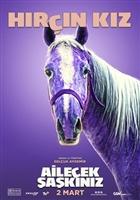Ailecek Saskiniz movie poster