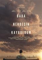 Baba Nerdesin Kayboldum movie poster