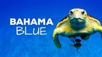 Bahama Blue movie poster