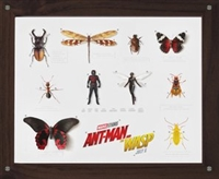 Ant-Man and the Wasp movie poster
