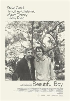 Beautiful Boy poster #1578252