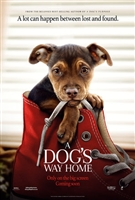 A Dog's Way Home #1588866 movie poster