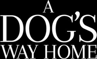 A Dog's Way Home #1588869 movie poster