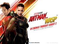 Ant-Man and the Wasp #1595226 movie poster