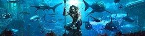 Aquaman poster #1598539
