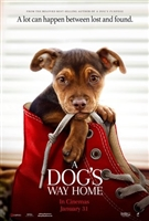 A Dog's Way Home #1600075 movie poster