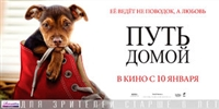 A Dog's Way Home #1600370 movie poster