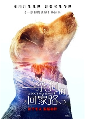 A Dog's Way Home poster #1604338