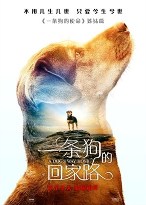 A Dog's Way Home poster #1604339
