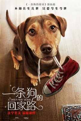 A Dog's Way Home poster #1604342