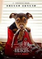 A Dog's Way Home #1604343 movie poster