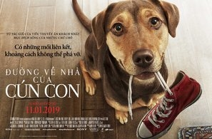 A Dog's Way Home poster #1604410