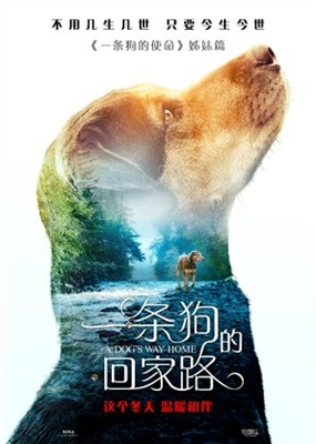 A Dog's Way Home poster #1604423