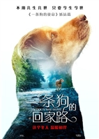 A Dog's Way Home #1604423 movie poster