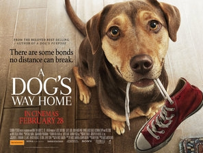 A Dog's Way Home poster #1610640