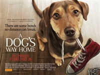 A Dog's Way Home #1610640 movie poster