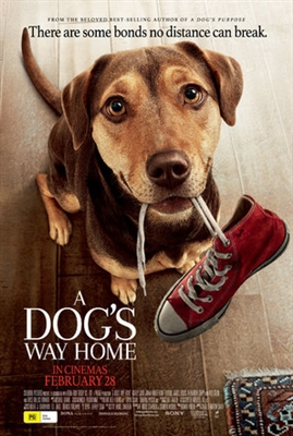 A Dog's Way Home poster #1611263