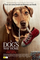A Dog's Way Home #1611263 movie poster