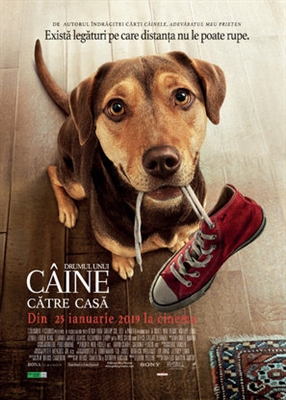 A Dog's Way Home poster #1619979