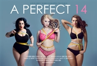 A Perfect 14 movie poster