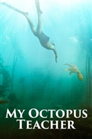 My Octopus Teacher movie poster