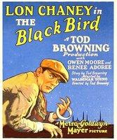The Blackbird movie poster