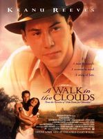 A Walk In The Clouds #642756 movie poster