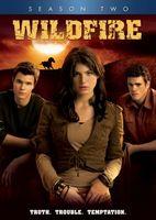 Wildfire movie poster