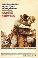 Wild Rovers movie poster