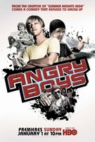 Angry Boys movie poster