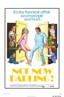 Not Now Darling movie poster